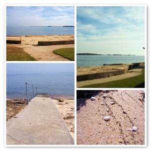 I ran away to the Bay